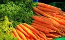 Bạn nên ăn những thứ này để loại bỏ độc tố trong phổi