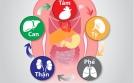 Bàn về Tỳ - Phế - Thận và nguyên nhân sinh bệnh hen suyễn