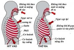Bệnh mạn tính về hô hấp có nguy cơ mắc covid- 19 cao hơn?