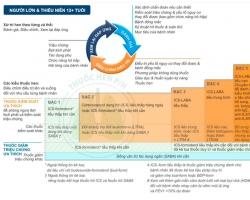 Phác độ điều trị hen phế quản GINA 2020